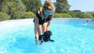 TEACHING NALA TO SWIM!