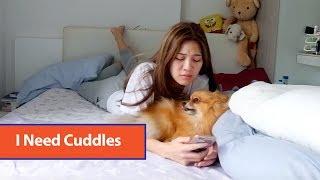 Dog Demands Cuddles thumbnail