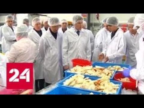 На Сахалине строят тепличный комплекс площадью 3,5 гектара - Россия 24