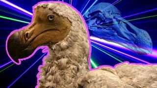 Scientists Recreate Dodo Bird with Lasers