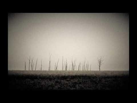 Pelthunter - Dead Fields