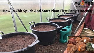How To Chit Spuds And Start Planting First Early's Potatoes