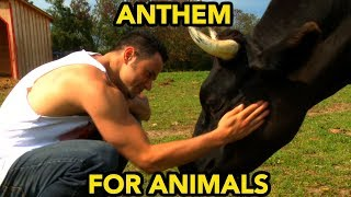 ANTHEM FOR ANIMALS   Gaia's Eye - Gaia • is • I   [OFFICIAL VIDEO]