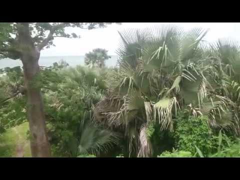 The beauty of The Gambia in rainy season!