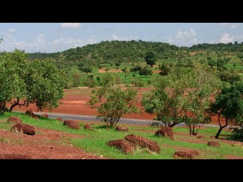 The Great Green Wall of Africa