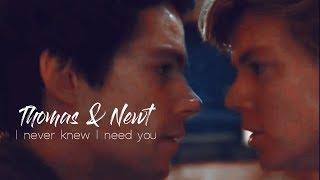 Thomas & Newt | Never knew I need you [Happy New Year!]