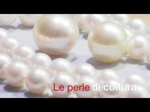 Come nasce una perla nell'ostrica su Lighthouse