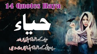 Haya 14 best quotes in Hindi Urdu with voice and images || Motivational Quotes Haya