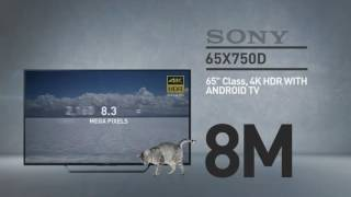 SONY 65X750D 4K HDR with Android TV XBR X750D Series // Full Specs Review