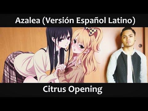 Azalea (Versión Español Latino) Citrus Opening