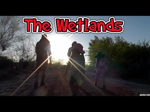 Hiking Wetlands Park Nature Center Las Vegas Nevada