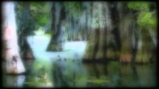 Cosmos Factory / Jacques Barbéri / La Volte (teaser)