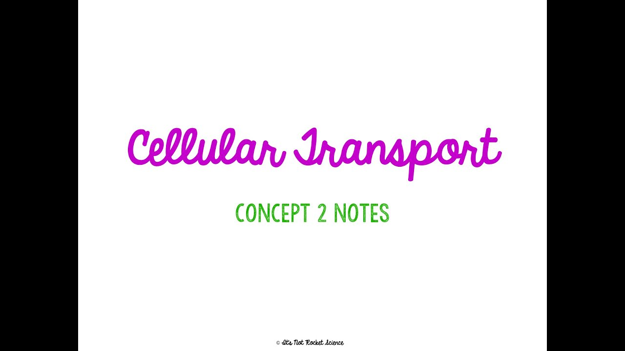 Unit 2 Cells Concept 2 Notes Youtube