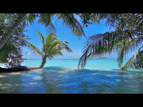 🌴 Ocean Ambience on a Tropical Island (Maldives) with Soothing Waves & Paradise View for Relaxation.