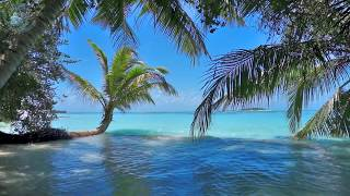 ? Ocean Waves On Tropical Island (Maldives) Ambience Sound, Paradise Beach Sounds For Relaxation