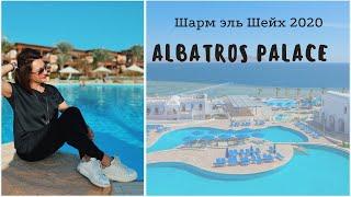 Обзор отеля ALBATROS PALACE Шарм эль Шейх 2020