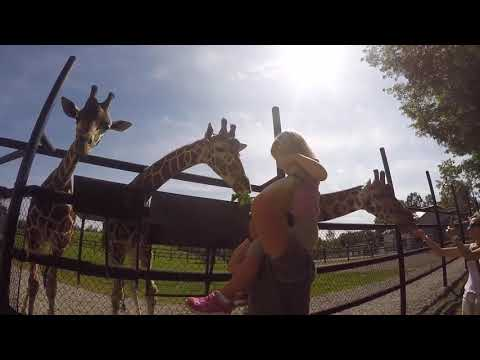 Behind The Scenes Tours At Safari Niagara