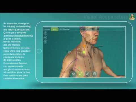 Visual Acupuncture - application (tablet,phone)