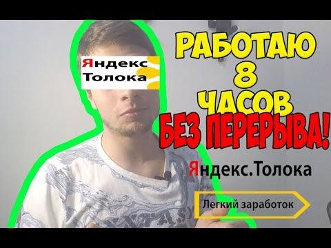 Сколько можно заработать на Яндекс Толока за 8 часов?