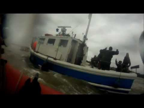 GRAY FOX @ Operation Sea Lizard