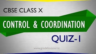 MCQ in Control and coordination :Quiz on Class 10th biology : CBSE Syllabus : NCERT X Science
