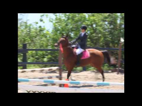 Horse Show May 12 2012