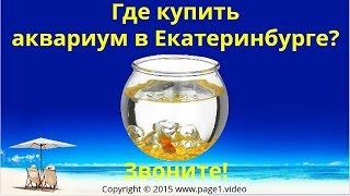 Купить аквариум Екатеринбург(Купить аквариум Екатеринбург - Где купить аквариум в Екатеринбурге? Если вы ищете, где купить аквариум в..., 2016-02-27T23:09:24.000Z)