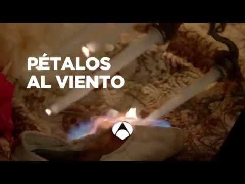 Antena 3 | Pétalos al viento - Petals on the wind (Remake 2014) - Trailer España