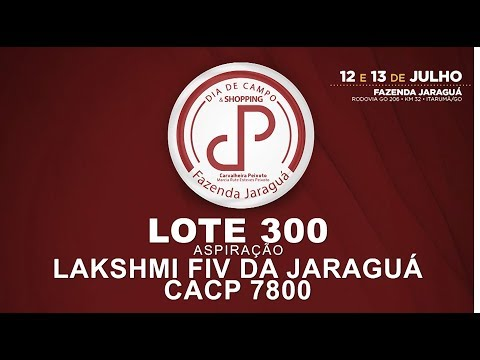 LOTE 300