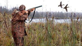 Охота на утку. Открытие весенней охоты 2019 г.