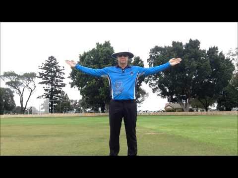 Cricket Umpire Signals - HD
