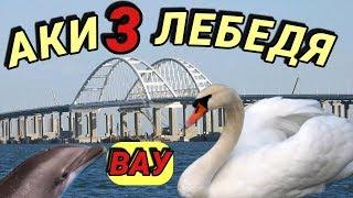 Крымский(июль 2018)мост! Сколько сделано,и сколько осталось сделать!Цифры и факты! Коммент!