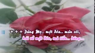 Khúc hát dâng hoa (Krf)