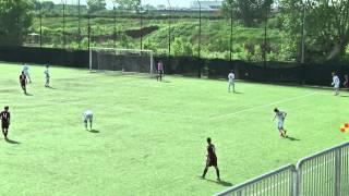 Video Gol Pertandingan Palermo vs Torino FC
