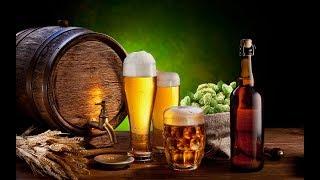 С.В. Савельев: Употребление алкоголя