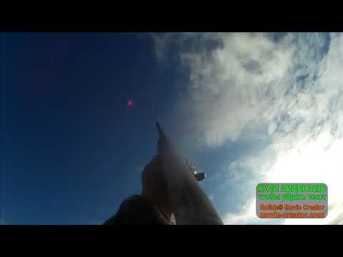 охота на гусей в НАО весна 2019