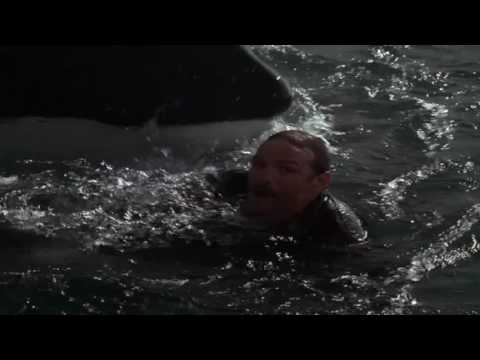 Free Willy 3 Clip - Willy's Humanity