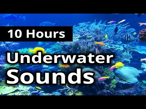 UNDERWATER Sounds for 10 hours ★ Sleep ★ Relaxation ★ Meditation