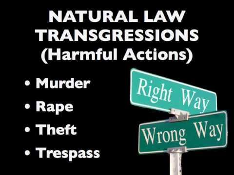 Theft, murder, rape & trespass come under  1 violation -  the 4 Natural Law violations