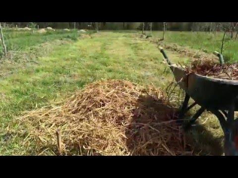 Rencontre impr vue henri poupart episode 20 doovi - Pomme de terre sous paille ...