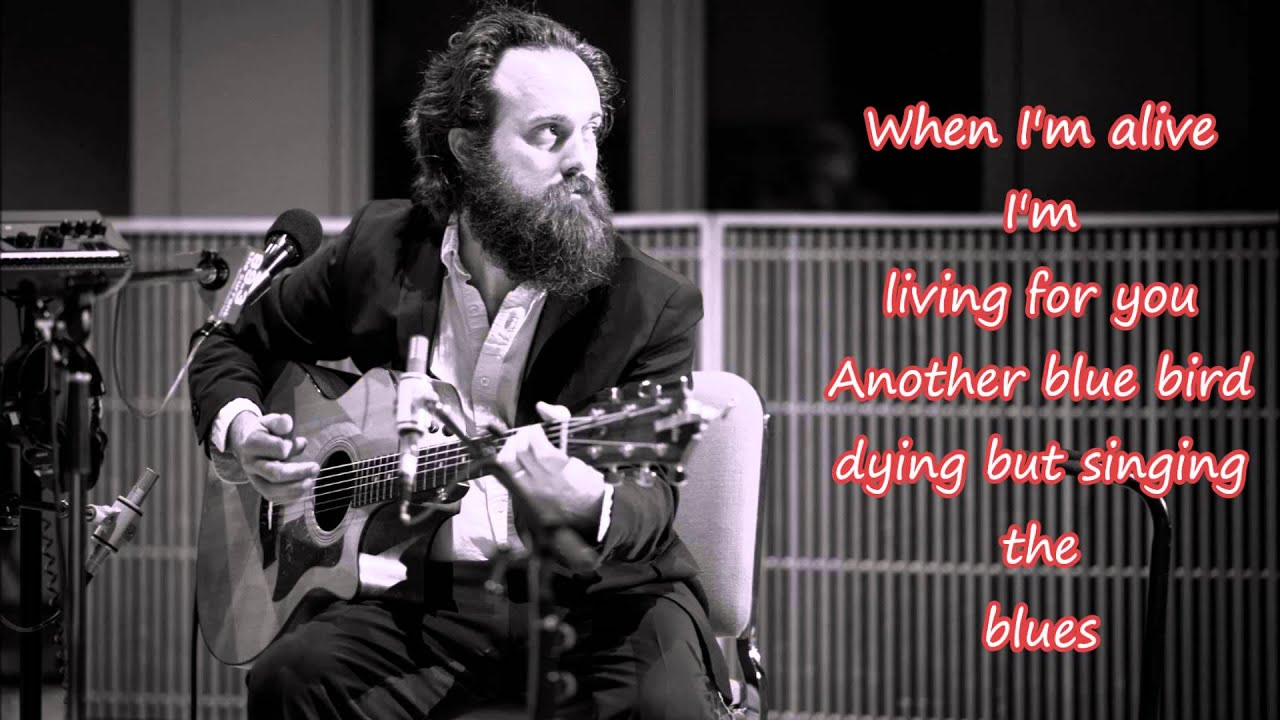 Iron & Wine Joy