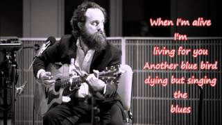 IRON & WINE - JOY - LYRICS HD