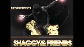 I'm Sorry - Shaggy feat. Qwote