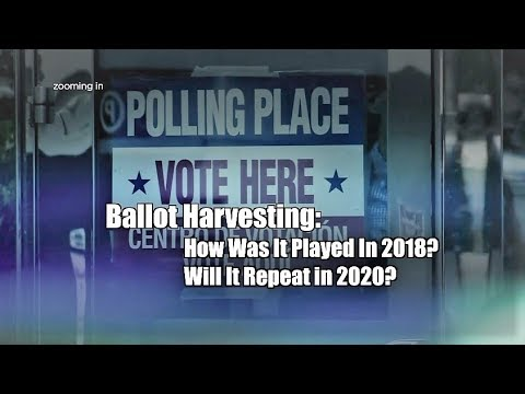 Hennepin County attorney says no reports of 'ballot harvesting' prior ...