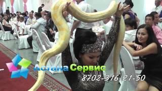 Танец со Змеей Астана Сервис