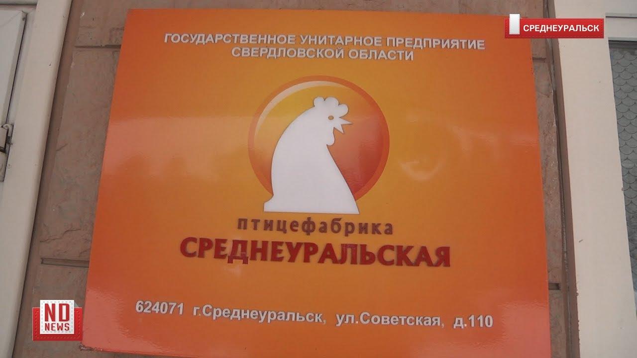 Среднеуральскую птицефабрику потребовали закрыть