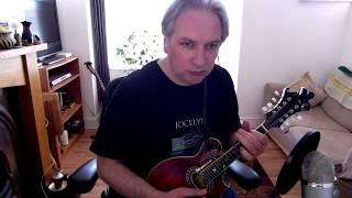 Dance Of The Honeybees (hornpipe) on mandolin