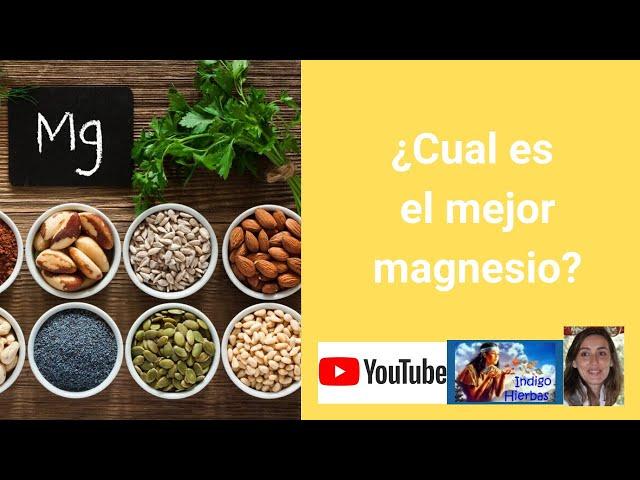 ¿Cual es el mejor magnesio?