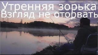 Ловим карася,леща ,подуста на реке Сосна .Елец