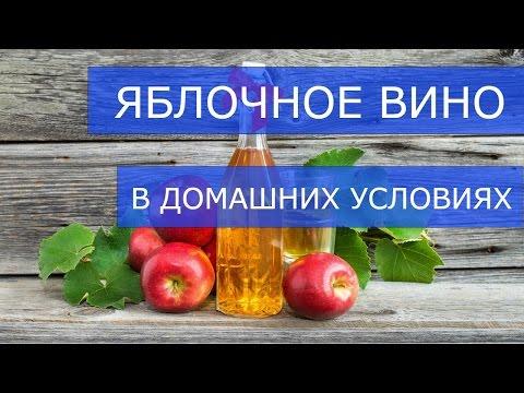 как делать вино из яблок в домашних условиях рецепт фото